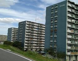 太子橋1.png